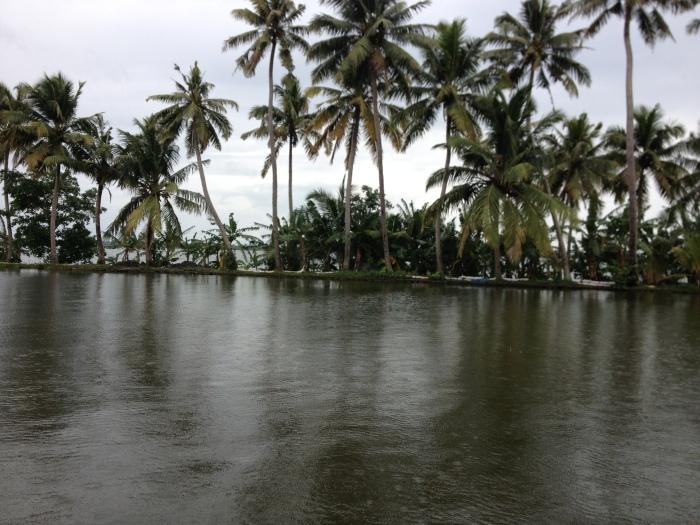 Backwater5